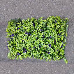 Газон-коврик самшитовый  синие ягоды для фитостен, 40 × 60 см.