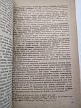 Первый интернационал Ф.Хейфец 1941 год, фото 7