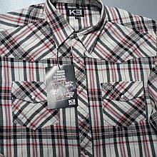 Джинсовая рубашка KE 100% хлопок (размеры S, M, L, XL)