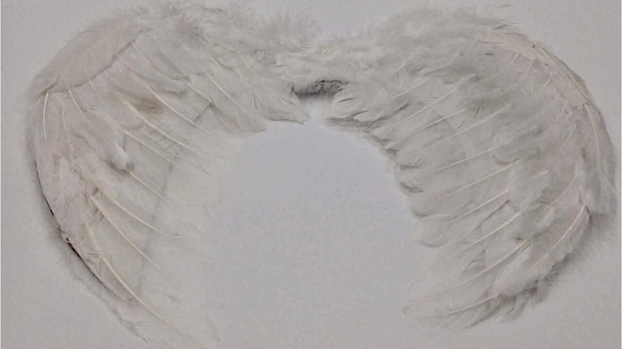Крылья Ангела белые  34 х 44 см