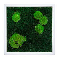 Картина з моху і дерева