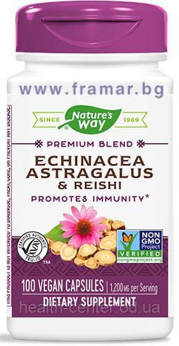 Эхинацея, астрагал и рейши 400 мг 100 капс натуральный препарат для повышения иммунитета Nature's Way USA