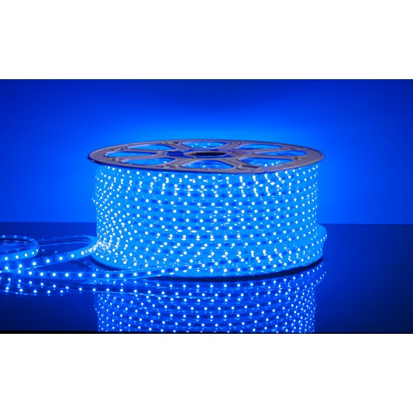 Дюралайт плоский (5050) Синий  (100 метр/ 60Лед) CF
