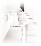 Фарба інтер'єрна Primalex Polar BILY Екстра біла PROJECT Ціна 1 кв. м., фото 3