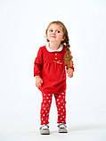 Комплект платье и лосины для девочки Smil в коробке, 109976, от 6 до 18 месяцев, фото 2