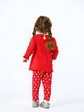 Комплект платье и лосины для девочки Smil в коробке, 109976, от 6 до 18 месяцев, фото 4
