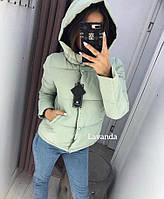 Куртка женская силикон 200 осень/весна с капюшоном от 42 до 54 размера