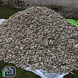 Камінь річковий плескатий для габіонів 40-80 мм, фото 4