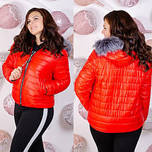 "Короткая теплая куртка большого размера ""Olsen""  Батал, фото 3"