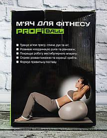 Мяч для Фитнеса 75 см, перламутровый в коробке MS1541