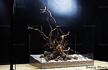 Композиція для акваріума Лава+В'юн