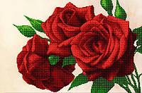 """Схема на ткани для вышивания бисером """"Королевские розы"""" (серия Элит)."""