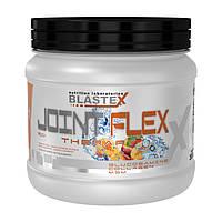 Blastex Joint Flex Therapy 300 g