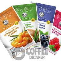 Чай фруктовый с мёдом АССОРТИ: Имбирь, Облепиха, Cмородина, Малина от 24 пакетов ТМ Аскания