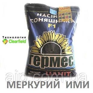 Семена подсолнечника Меркурий ИМИ (Технология CLEARFIELD)