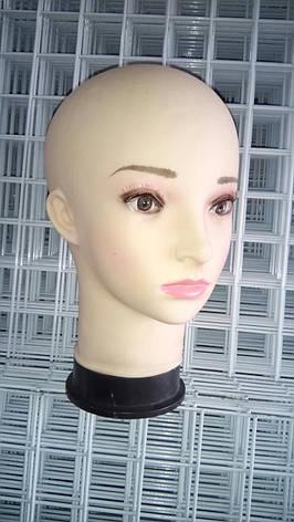 Голова женская (европейка), фото 2
