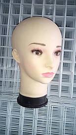 Голова женская (европейка)