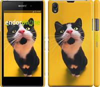 """Чехол на Sony Xperia Z1 C6902 Чёрно-белый кот на жёлтом фоне """"139c-38"""""""