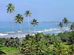 Отдых на Шри-Ланке из Днепра / туры на Шри-Ланку из Днепра, фото 4