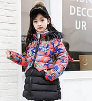 Куртка для девочки Бабочки. 110-150. Коралл