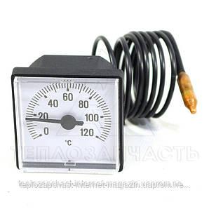 Термометр напольного котла Protherm KTV 10, 11. KLO 10-15. Tiger v12 - 0020025279