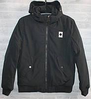 """Куртка мужская демисезонная на холлофайбере, размеры 48-56 """"BEFREE"""" купить недорого от прямого поставщика"""