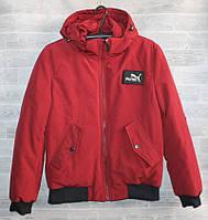 """Куртка мужская демисезонная PYMA, размеры 48-56 """"BEFREE"""" купить недорого от прямого поставщика"""