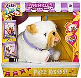 Собачка, щеня інтерактивний, Little Live Pets Оригінал з США, фото 3