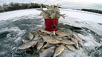 Fish XXL - спрей-активатор для зимней рыбалки. Цена производителя. Фирменный магазин