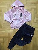 Теплый велюровый спортивный костюм Grace Киса (р.128)