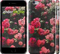 """Чехол на iPhone 6 Plus Куст с розами """"2729c-48"""""""