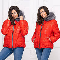 "Короткая теплая куртка большого размера ""Olsen""| Батал  цвет Красный"