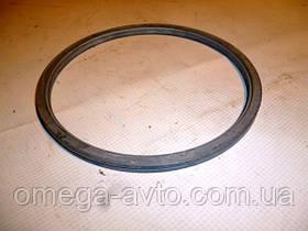 Кольцо уплотнительное газового стыка КамАЗ (ОРИГИНАЛ КамАЗ)