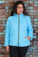 Короткая синтепоновая демисезонная женская батальная куртка с капюшоном  размеры 48-56. Арт-1345/37, фото 1