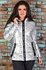 Красива стильна синтепоновая срібляста жіноча куртка з капюшоном розмірів 48-56. Арт-1346/37