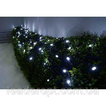 """[ОПТ] Вулична новорічна світлодіодна гірлянда """"Нитка"""" (String) на чорному(білому) проводі 100LED на 10 м"""