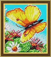 Схема для вышивки бисером Бабочка Летнее настроение