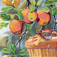 """Схема для вышивания бисером на художественном холсте """"Любитель яблок"""""""