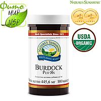 Burdock (Бердок НСП; репейник) эффективное растительное желчегонное