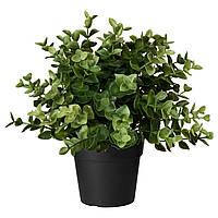 IKEA Искусственное растение в горшке, душица, 9 см