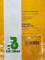 Огірок Караоке F1, 250 нас, Rijk Zwaan