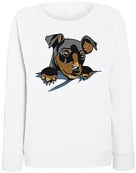Женский свитшот Cute Dog Pocket (белый)