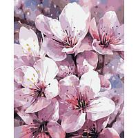 Картины по номерам Чарующая Весна / пленка 40*50   КНО2946