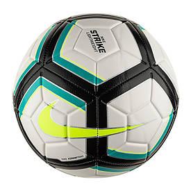 М'ячі TEAM-каталог NK STRK TEAM 350G 5