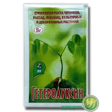 Гетероауксин (аналог корневин) 5 г, фото 2