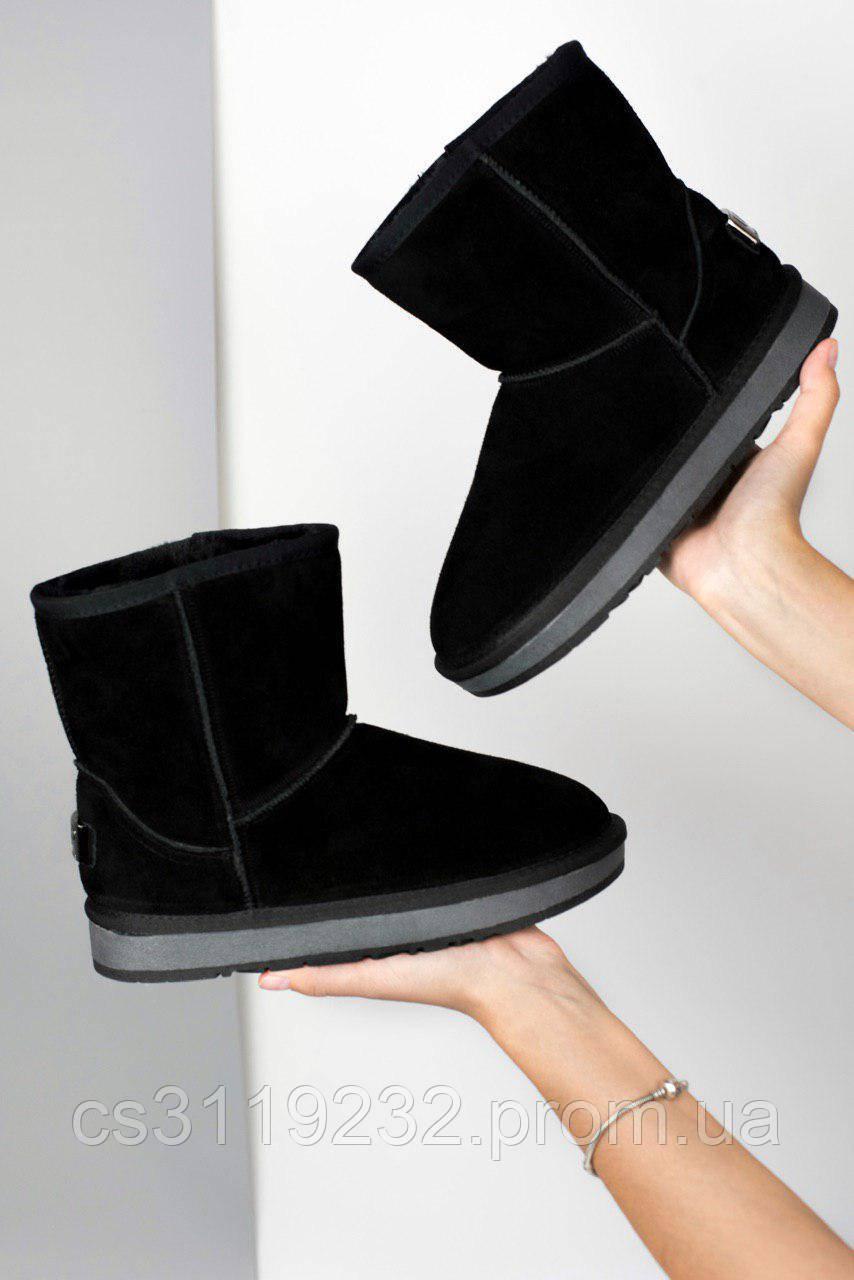 Жіночі чоботи зимові UGG Classic Black (чорний)