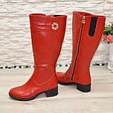 Сапоги красные кожаные на невысоком каблуке, декорированы фурнитурой. Батал!, фото 2