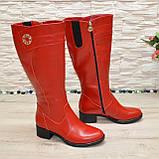 Сапоги красные кожаные на невысоком каблуке, декорированы фурнитурой. Батал!, фото 3