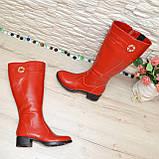 Сапоги красные кожаные на невысоком каблуке, декорированы фурнитурой. Батал!, фото 4