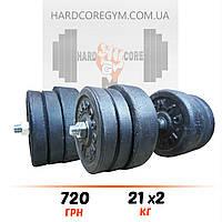 Гантелі 2х21 кг